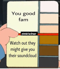 Fam, Memes, and SoundCloud: You good  fam  Pink fxther  Watch out they  might give you  their soundcloud Who up?
