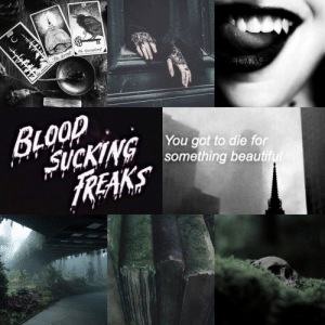 Slytherin, Tumblr, and Aesthetic: You got to die for  something beautif  REAKS mydark-aesthetic:  Requested! Vampire + Tarot + Slytherin (plus Palaye Royale)