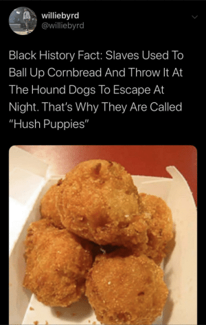 You gotta hush those puppies somehow. by icewataa MORE MEMES: You gotta hush those puppies somehow. by icewataa MORE MEMES