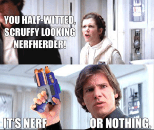 Memes, 🤖, and Nerf: YOU HALF-WITTED  SCRUFFY LOOKING  NERFHERDER!  IT'S NERF  OR NOTHING