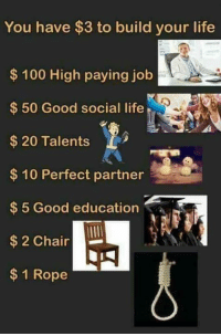Anaconda, Life, and Good: You have $3 to build your life  $100 High paying job  50 Good social life  $20 Talents  $ 10 Perfect partner  $5 Good education  $ 2 Chair  $1 Rope