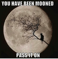 Moon: YOU HAVE BEEN MOONED  PASS IT ON