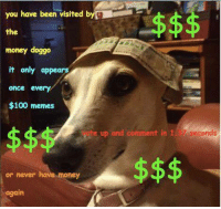 Anaconda, Memes, and Money: you have been visited b  the  money doggo  it only appears  once every  $100 memes  ete sp and cmmnt  37.seconds  7 seconds  or never have money  again <p>epic clickbait 60 fps hd</p>