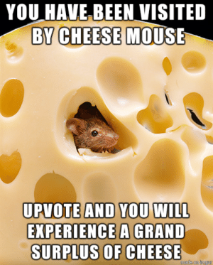 cheese: YOU HAVE BEEN VISITED  BY CHEESE MOUSE  UPVOTE AND YOU WILL  EXPERIENCE A GRAND  SURPLUS OF CHEESE  made on imgur