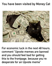 """money cat: You have been visited by Money Cat  For economic luck in the next 48 hours,  comment """"Upvote memes are banned  and you should feel bad for getting  this to the frontpage, because you're  desperate for an Upvote meme"""