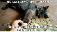 money cat: YOU HAVE BEEN VISITED BY MONEY CAT  UPVOTEIN THE NEXT9 SECONDS OR  FOREVER BEIN DEBT