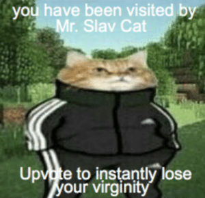 Dank, Memes, and Target: you  have  been  visited  by  Mr. Slav Cat  Upvte to instantly lose  our virginitv lose your vg by PizzaRollsss MORE MEMES