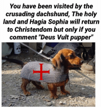 """Meme, Memes, and Catholic: You have been visited by the  crusading dachshund, The holy  land and Hagia Sophia will return  to Christendom but only if you  comment """"Deus Vult pupper"""" Stolen from Proudly catholic, an incredible page (if you aren't a Vikang) Go like Edgy Memes and Fashy Dreams 2: The Führer's Body Double and go join the group (Link: https://www.facebook.com/groups/395876250800737/)"""