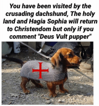 """Dank, 🤖, and Crusades: You have been visited by the  crusading dachshund, The holy  land and Hagia Sophia will return  to Christendom but only if you  comment """"Deus Vult pupper"""""""