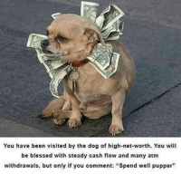 "Cash Flow: You have been visited by the dog of high-net-worth. You will  be blessed with steady cash flow and many atm  withdrawals, but only if you comment: ""Spend well pupper"""