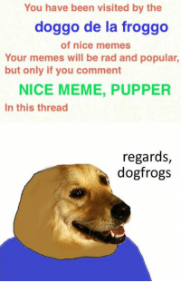 You Have Been Visited By: You have been visited by the  doggo de la froggo  of nice memes  Your memes will be rad and popular,  but only if you comment  NICE MEME, PUPPER  In this thread  regards,  dogfrogs