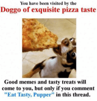 "Eat Tasty, Pupper.  Although the lil nugger looks tasty enough we could eat him: You have been visited by the  Doggo of exquisite pizza taste  Good memes and tasty treats will  come to you, but only if you comment  ""Eat Tasty, Pupper"" in this thread. Eat Tasty, Pupper.  Although the lil nugger looks tasty enough we could eat him"