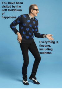 Good, Happiness, and Jeff Goldblum: You have been  visited by the  Jeff Goldblum  of  happiness  Everything is  fleeting,  including  sadness. You're gonna have a good day!