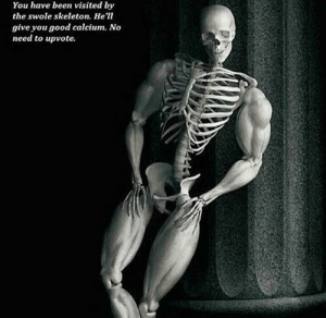 Swole Boi via /r/memes https://ift.tt/2DGtO1K: You have been visited by  the swole skeleton. He'l  give you good calcium. No  need to upvote. Swole Boi via /r/memes https://ift.tt/2DGtO1K