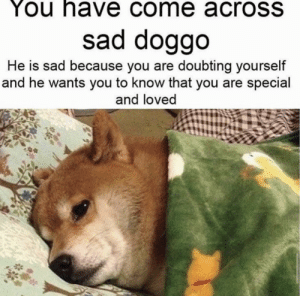 Oop- periodt >-: You have come acroSS  sad doggo  He is sad because you are doubting yourself  and he wants you to know that you are special  and loved Oop- periodt >-