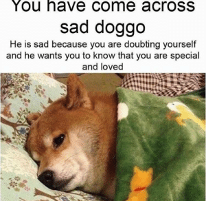 Come Across: You have come acrosS  sad doggo  He is sad because you are doubting yourself  and he wants you to know that you are special  and loved