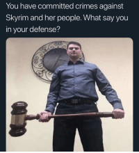 What Say You: You have committed crimes against  Skyrim and her people. What say you  in your defense?