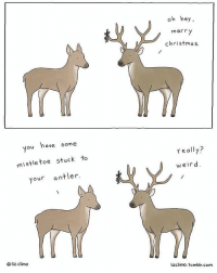 Tis the season indeed. What's your favourite Christmas song? (artist: @lizclimo): You have some  mistletoe stuck to  your antler.  Oliz climo  oh hey,  mer r  Christmas.  really?  weird  lizClimo. tumblr.com. Tis the season indeed. What's your favourite Christmas song? (artist: @lizclimo)