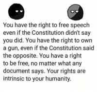 Memes, Constitution, and Free: You have the right to free speech  even if the Constitution didn't say  you did. You have the right to own  a gun, even if the Constitution said  the opposite. You have a right  to be free, no matter what any  document says. Your rights are  intrinsic to your humanity. You are an individual, you are a libertarian.