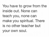 Inside Out, Memes, and Teacher: You have to grow from the  inside out. None can  teach you, none can  make you spiritual. There  is no other teacher but  your own soul