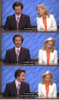 Point of Pride [Anchorman] (2004): You have way  too much pubic hair.  Actually, that's  a point of pride.  I'm very proud  of my mane of pubic hair,  so thank you. Point of Pride [Anchorman] (2004)