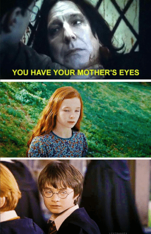 Insanely Funny Harry Potter Memes Will Knock You Down From A Broom Ride - Swish Today: YOU HAVE YOUR MOTHER'S EYES Insanely Funny Harry Potter Memes Will Knock You Down From A Broom Ride - Swish Today
