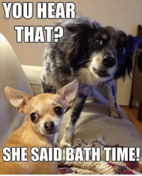 Memes, Time, and 🤖: YOU HEAR  THAT?  SHE SAID BATH TIME!