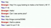 Hello, Http, and Imgur: You: hey  Stranger: Hey! I'm a guy looking to make a hot friend :) M 17.  You: F-16  Stranger: Hello!  Stranger: Can I see some pics?  You: Sure  You: http://imgur.com/a/OD165  Stranger: that's a plane  You: I said I'm an F-16 Why....
