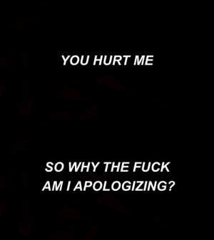 You Hurt Me: YOU HURT ME   SO WHY THE FUCK  AM I APOLOGIZING?