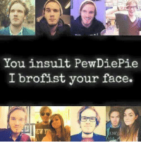 Brofist: You insult PewDiePie  I brofist your face.
