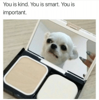 You is kind. You is smart. You is  important. Send Fansigns for a shoutout... - - - - - - anime memes dank dankmemes 4chan nofilter lmao minecraft edgy edgymemes furries firstpost justwokeup wtf cancer trump trump2016 meme memelord daddy turtles zerochill bushdid911 autism depressed savage cringe christmas newyear amazing President of Cerberus_ENT