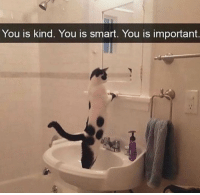 Memes, 🤖, and Smart: You is Kind. You is smart. You is important Weekly motivation