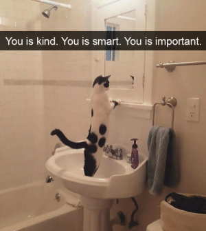You got dis: You Is kind. You is smart. You Is important. You got dis