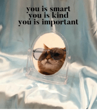 You Is Kind You Is Smart You Is Important: you is smart  you is kind  you is important