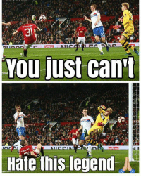 """Memes, Martial, and 🤖: You just can't  Hate this legend Phil Neville: """"If you want an example of how to behave when you're not in the team, follow Schweinsteiger's example."""" . Pic : @manunited.cr7 . mufc manchesterunited ggmu mourinho davesaves reddevils oldtrafford darmian mkhitaryan ibrahimovic bailly pogba waynerooney martial anderherrera rashford philjones daleyblind lingard ashleyyoung valencia lukeshaw smalling daviddegea juanmata manutd14_ manutd14_id"""