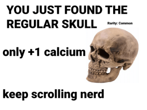 Nerd, Common, and Skull: YOU JUST FOUND THE  REGULAR SKULL  Rarity: Common  only +1 calcium  keep scrolling nerd move along folks