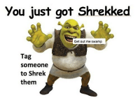Dank, Shrek, and Tag Someone: You just got Shrekked  Get out me swamp  Tag  someone  to Shrek  them Moist