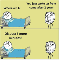 Where Am I, Hilarious, and Coma: You just woke up from  coma after 2 years  Where am I?  Ok, Just 5 more  minutes! Hilarious....