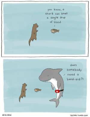 Fish are friends via /r/wholesomememes https://ift.tt/30TcLAe: you know, a  shark can Smell  a single drop  of blood  does  Somebody  /need a  band-aid?  Oliz climo  lizclimo.tumblr.com Fish are friends via /r/wholesomememes https://ift.tt/30TcLAe