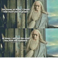 Memes, Contempt, and Secrecy: You know at times I forget  how much youve grown.  At times, I still see the small  boy from the cupboard.  FA I love this scene You can hate Dumbledore for using Harry 'like a pig for slaughter' like Snape said, you can hate him for his secrecy, his selfishness, his contempt of danger, his past. I would understand. He's flawed. But he has this incredible aura of benevolence, empathy, power, intelligence, security & infinite wisdom which makes that he's one of my favorite characters. He has flaws but his qualities overpower them. 👉🏼 what are your thoughts on him? HarryPotter