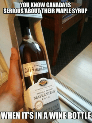 Tumblr, Wine, and Blog: YOU KNOW CANADA IS  SERIOUSABOUT THEIR MAPLE SYRUP  2014 MAPLESTO  SINGLE PRE  ORGANIC  MAPLE SYRUP  2014  SINGLE PRESS  WHEN IT'S IN A WINE BOTTL  DERABLE  NIQUE epicjohndoe:  Maple Syrup Is Serious Business