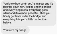 I can't handle shit like this.: You know how When you're in a car and it  pouring down rain, you go under a bridge  and everything stops. Everything goes  Silent and it's almost peaceful. hen you  finally get from under the bridge, and  everything hits you a little harder than  before.  You were my bridge. I can't handle shit like this.