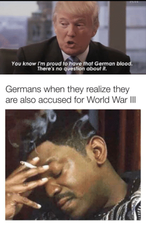 Oh no, not again: You know I'm proud to have that German blood.  There's no question about it.  Germans when they realize they  are also accused for World War III  1714 Oh no, not again