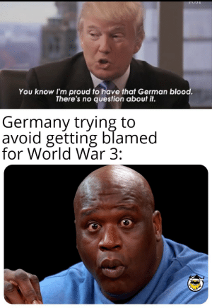 The Allies want to know your location: You know I'm proud to have that German blood.  There's no question about it.  Germany trying to  avoid getting blamed  for World War 3: The Allies want to know your location