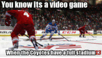 Hockey, Game, and Video: You know its a video game  When the Coyotes have a Stadium -winch