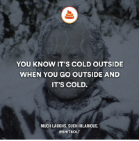 Memes, 🤖, and You Know It: YOU KNOW IT'S COLD OUTSIDE  WHEN YOU GO OUTSIDE AND  IT'S COLD.  MUCH LAUGHS. SUCH HILARIOUS.  @SHITBOLT 100%