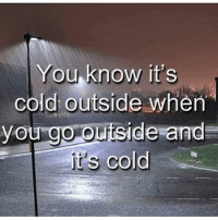 Shit, Dank Memes, and Cold: You know it's  cold outside when  you go outside and  t's cold  CO Real shit 😂💯