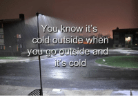 Memes, Cold, and 🤖: You know  it's  cold outside when  you go outside and  it's cold You do...