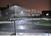 Dank Memes, Cold, and Outsiders: You know it's  cold outside when  you go outside and  it's cold