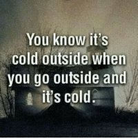 Memes, Cold, and 🤖: You know it's  cold outside when  you go outside and  it's cold Aye lol